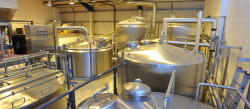 Photo for: How to brew perfect English pale ale